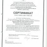 Сертификат участника фестиваля Берег детства-1